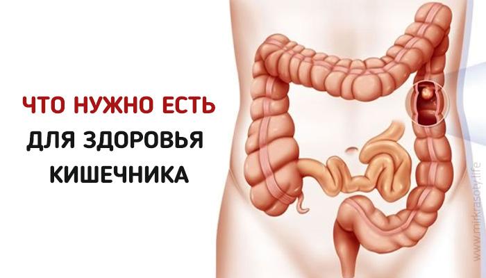 Пять правил для здорового кишечника
