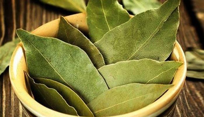 Обряд на желание с лавровым листом